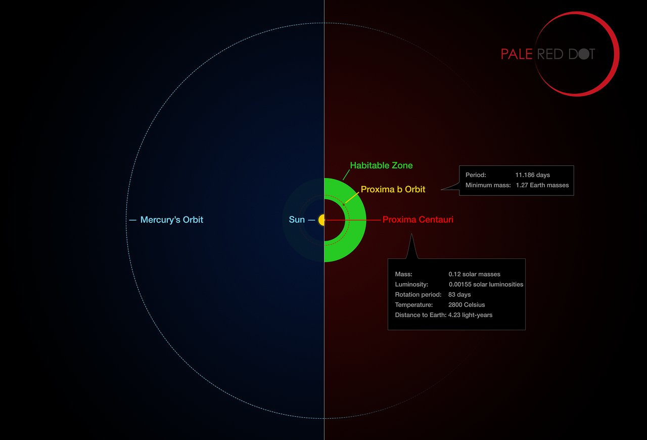proxima-centauri-planet-compared-to-sun